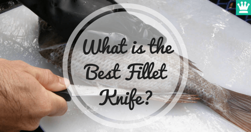 What is the Best Fillet Knife?