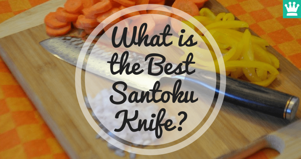 What is the Best Santoku Knife?