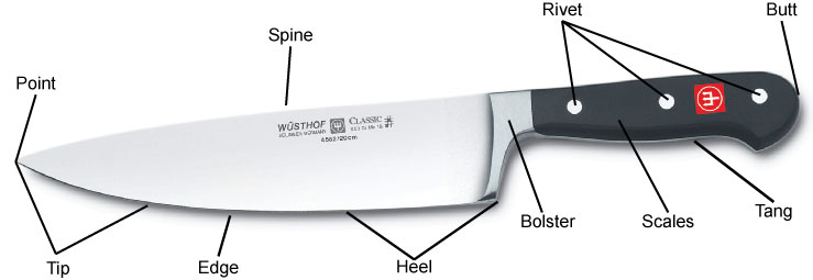 Anatomy Of A Chefs Knife
